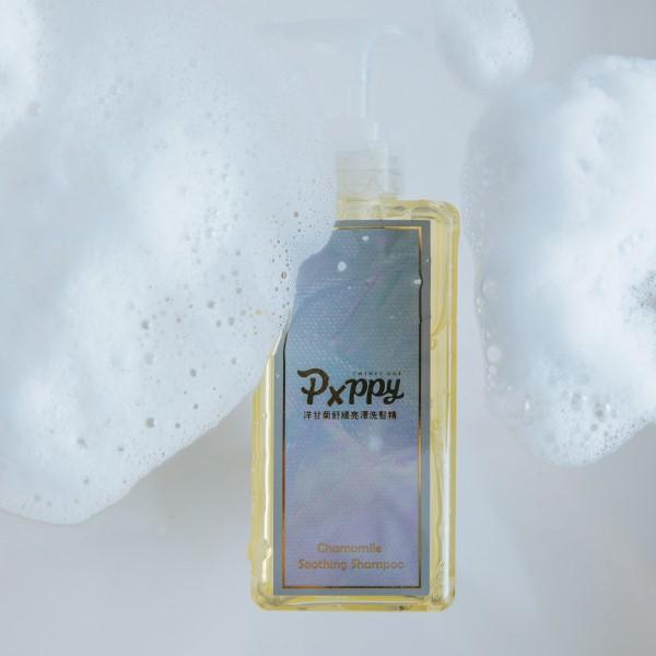 【日常洗護】洗髮精(擇一)+洋甘菊護髮乳